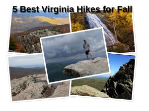 Best Virginia Fall Hikes